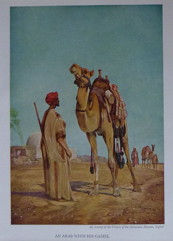 Drawn camel islam Islam East 1954 Camels With