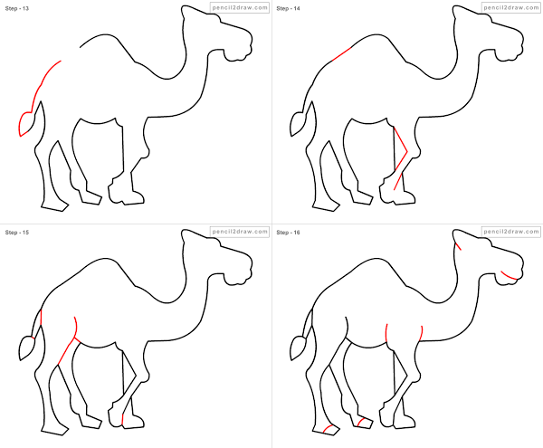 Drawn camels line drawing Draw cartoon draw to camel