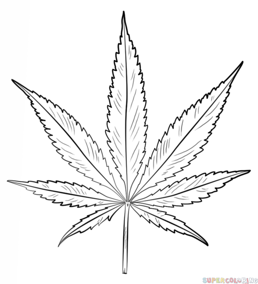 Drawn weed needle Step a How draw How