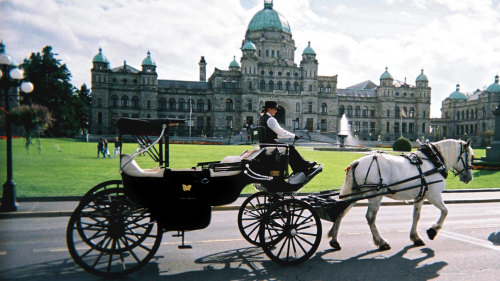 Drawn carriage  Tour Horse Carriage Victoria