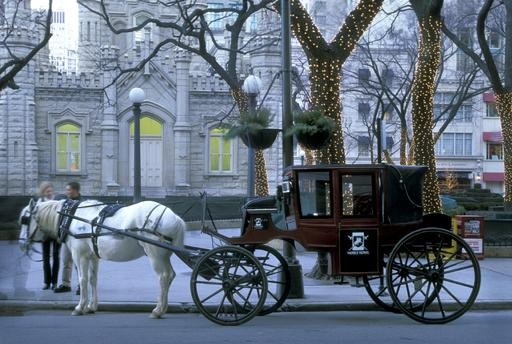 Drawn carriage Drawn Horse Chicago Carriage of