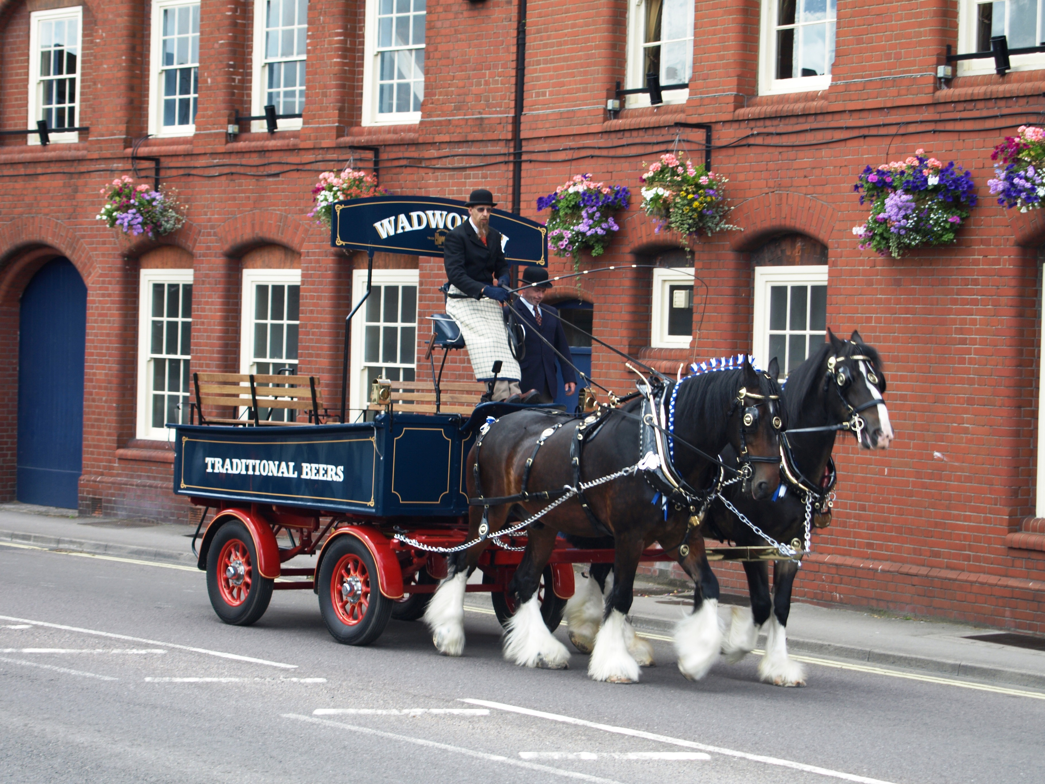 Drawn cart heavy horse Horses Wadworth on beer Brewery's