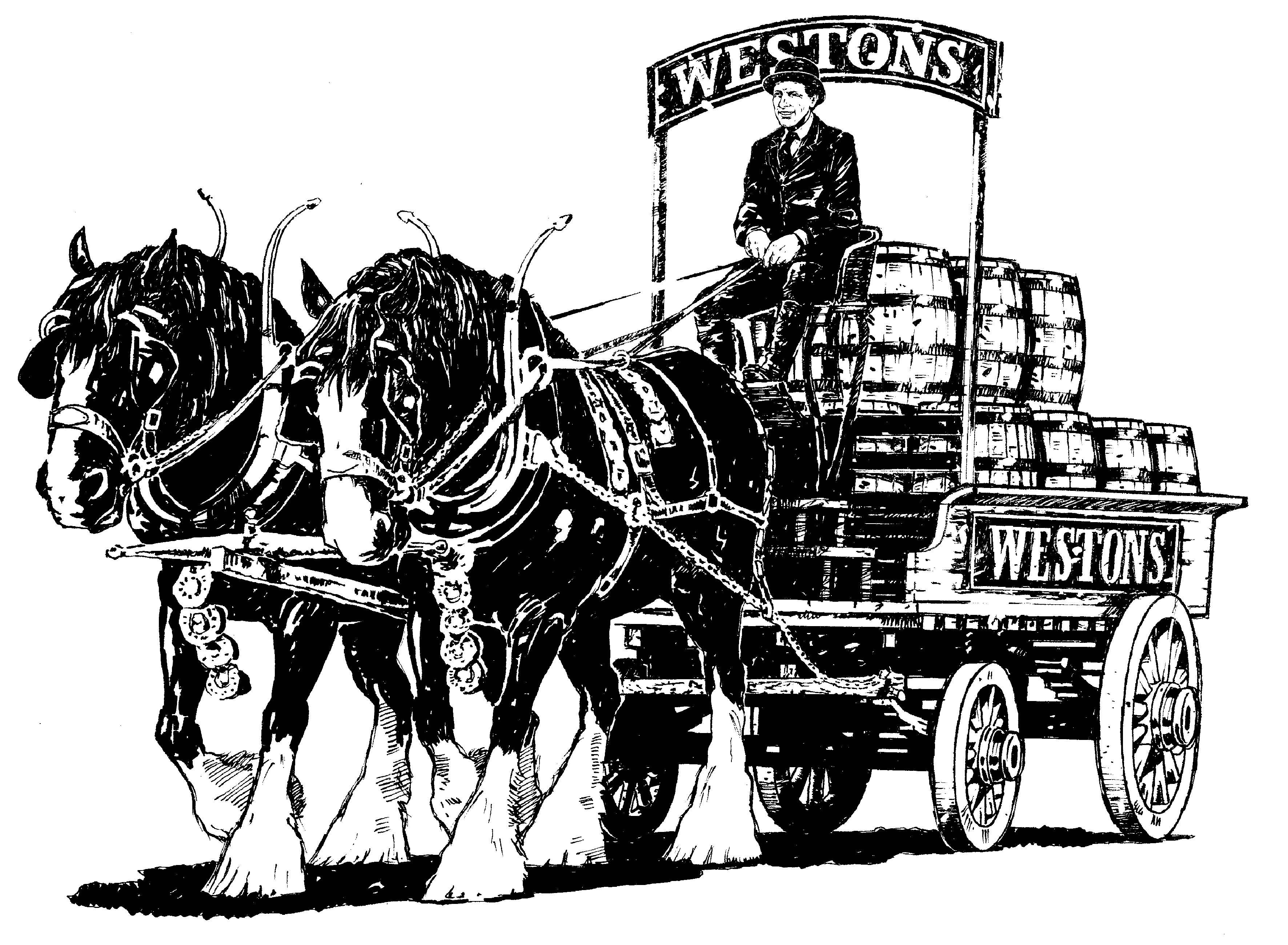Drawn cart heavy horse &  Shire H Sons