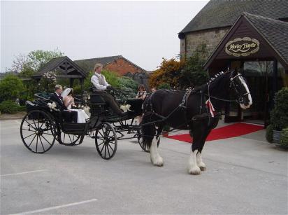 Drawn cart heavy horse At Why wedding photo Harry