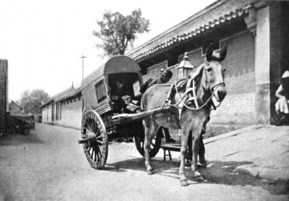 Drawn cart mule Etymology and cart related examples