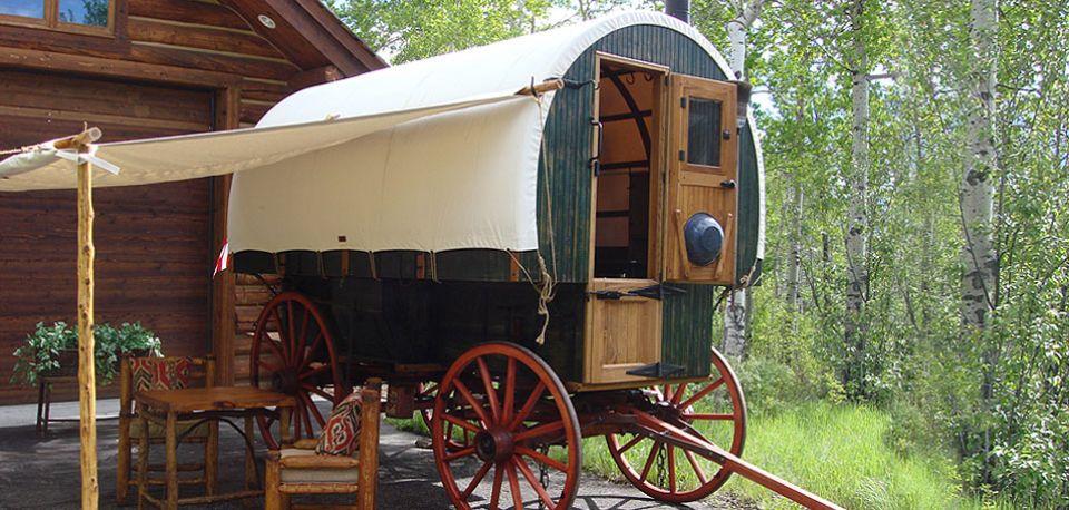 Drawn cart sheep Chuck Stagecoach & wagon Sales