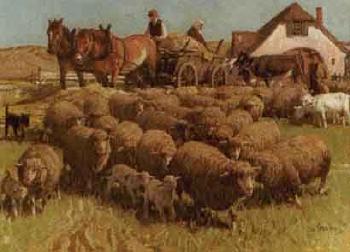 Drawn cart sheep By cart Josef Sheep horse