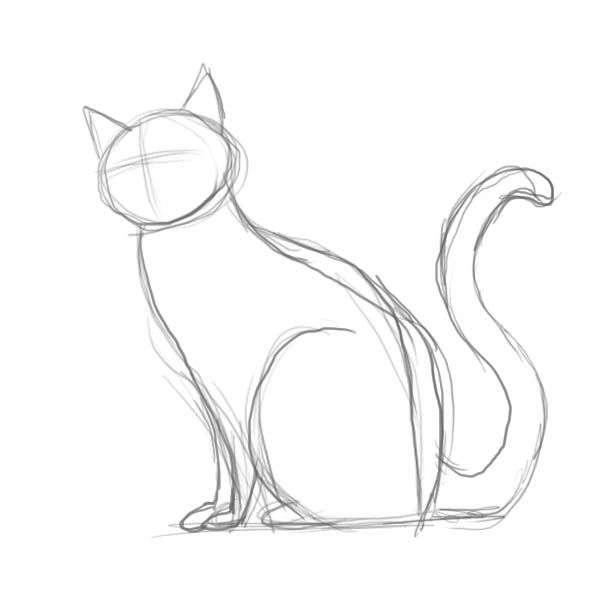 Drawn cat 25+ Cat Pinterest on drawing