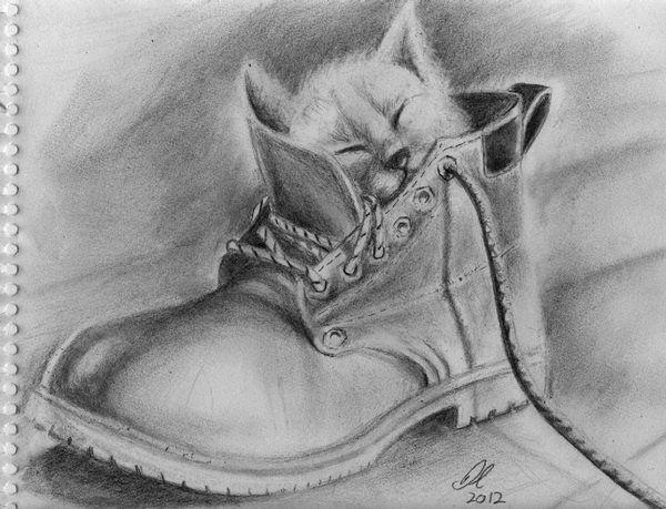 Drawn still life cat Ideas drawing drawing 4 Pinterest