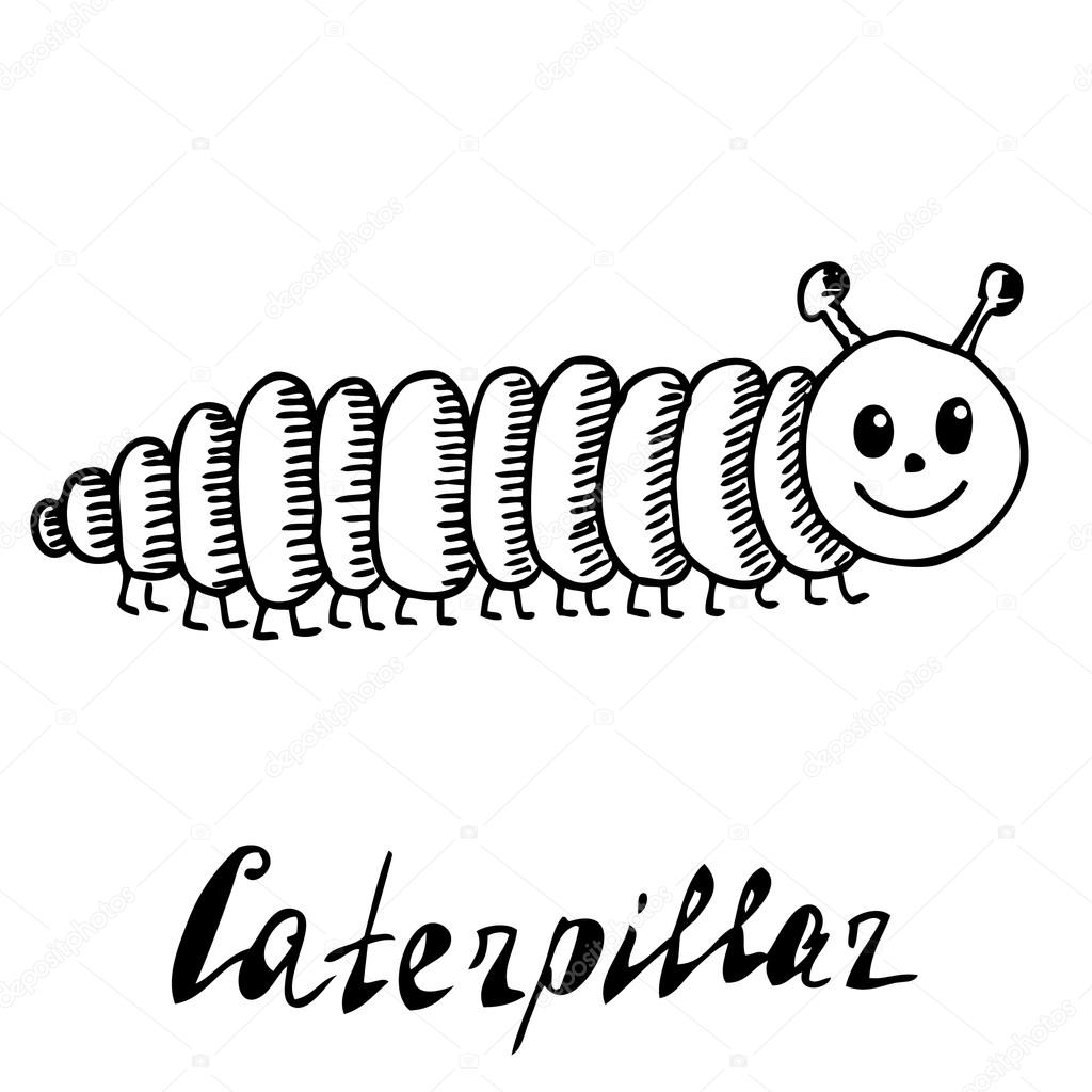 Drawn caterpillar Sketch — drawn drawn sketch