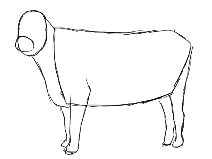 Drawn cattle How Cow Central Draw To
