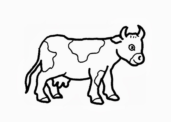 Drawn cattle baby cow #11