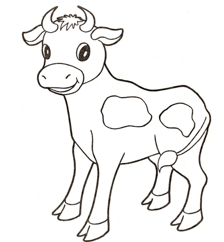 Drawn cattle baby cow #6