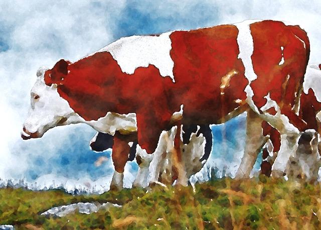 Drawn cattle graffiti #9