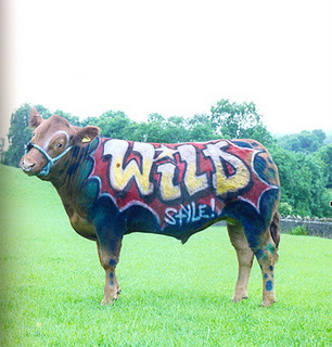 Drawn cattle graffiti #10