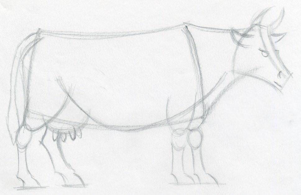 Drawn cattle line art #7