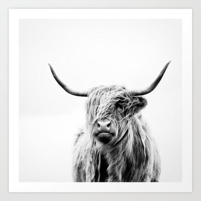 Drawn cattle printable #3
