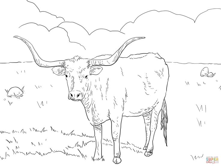 Drawn cattle printable #9