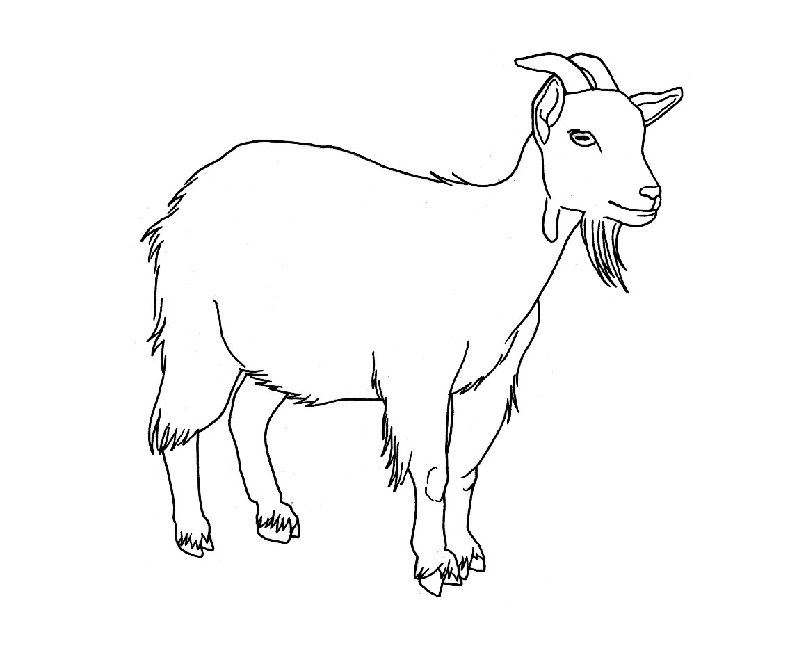 Drawn cattle small kid #14