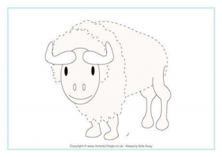 Drawn cattle trace Animal Pages Page Bison Tracing