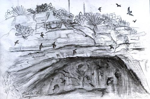 Drawn cavern Cavern Carlsbad Cavern It It