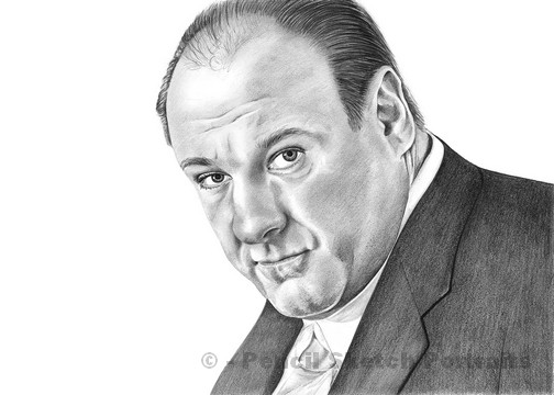 Drawn portrait famous celebrity Drawings of James Famous &