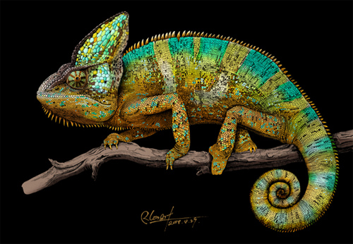 Drawn cameleon eye Illustrations  Marvel These Intricate