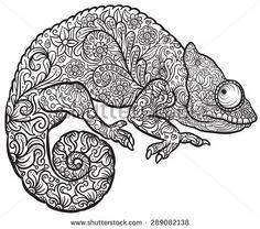 Drawn reptile zentangle Vector Chameleon Hand in Print