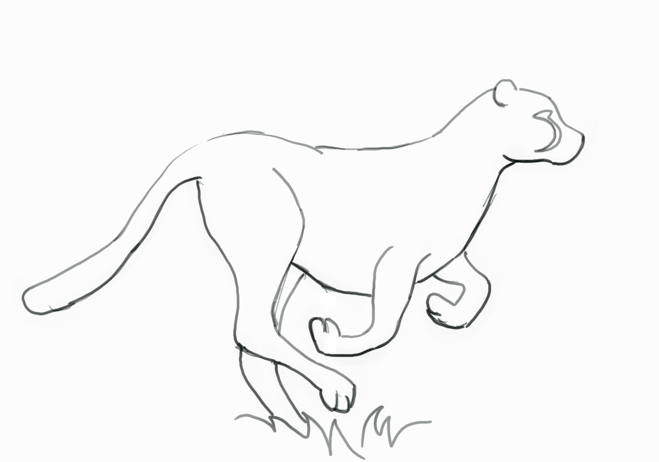 Drawn pice cheetah How To Draw by Cheetah