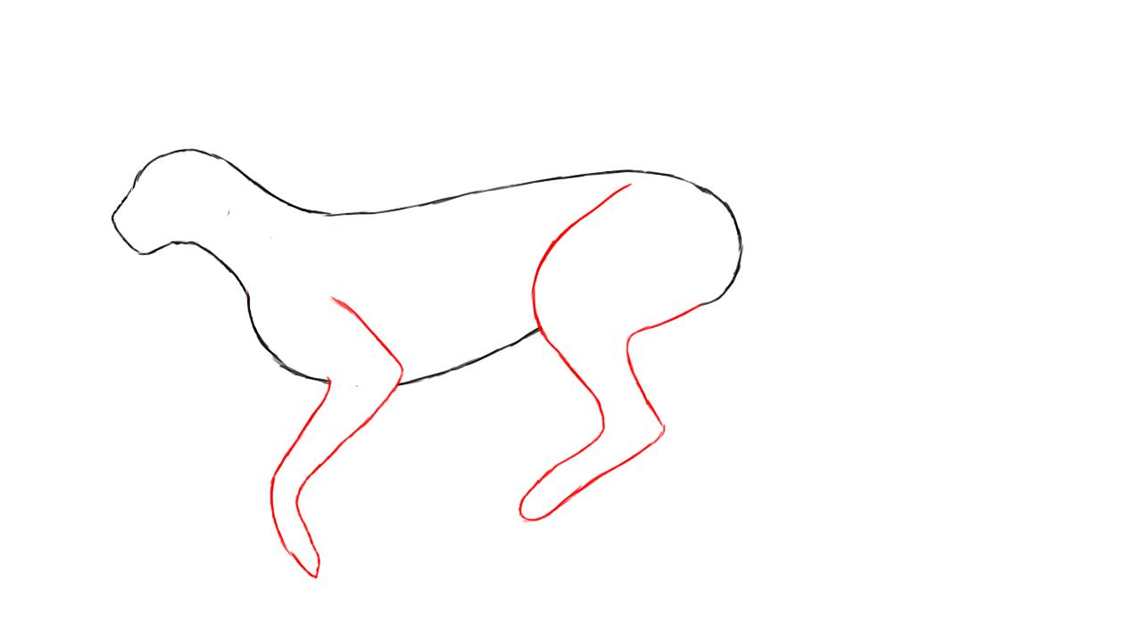 Drawn cheetah To How Draw Draw Cheetah