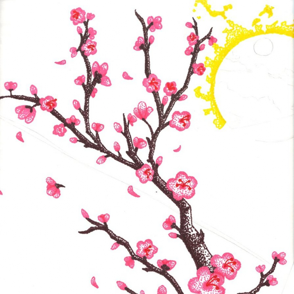 Drawn cherry blossom Drawing Best  Library Blossoms