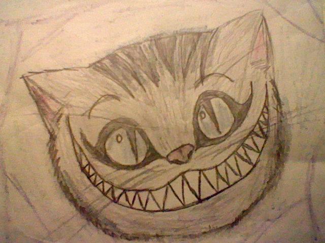 Drawn alice in wonderland real cat #4