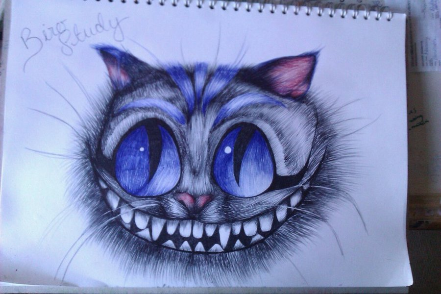 Drawn cheshire cat blue Cheshire on by blue study