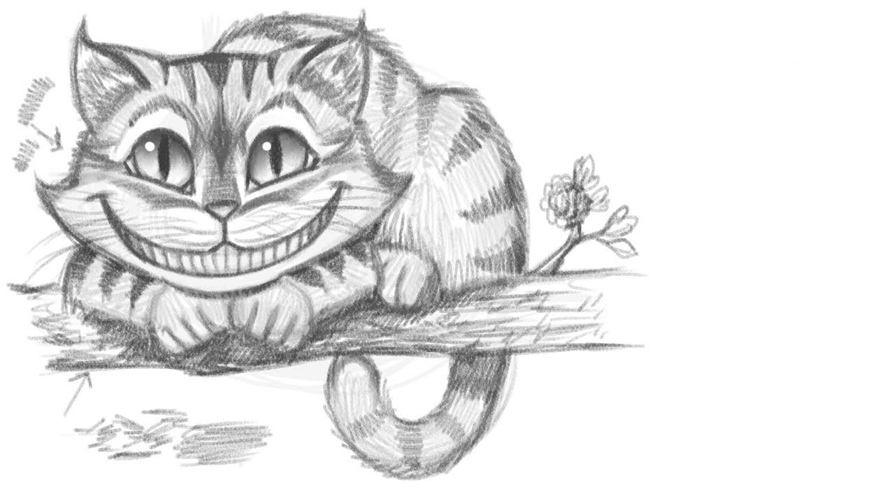 Drawn cheshire cat cashier First Memories Wonderland Carroll Cat