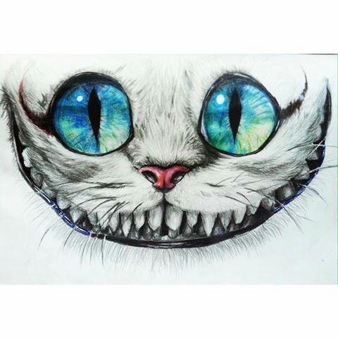 Drawn alice in wonderland real cat #7