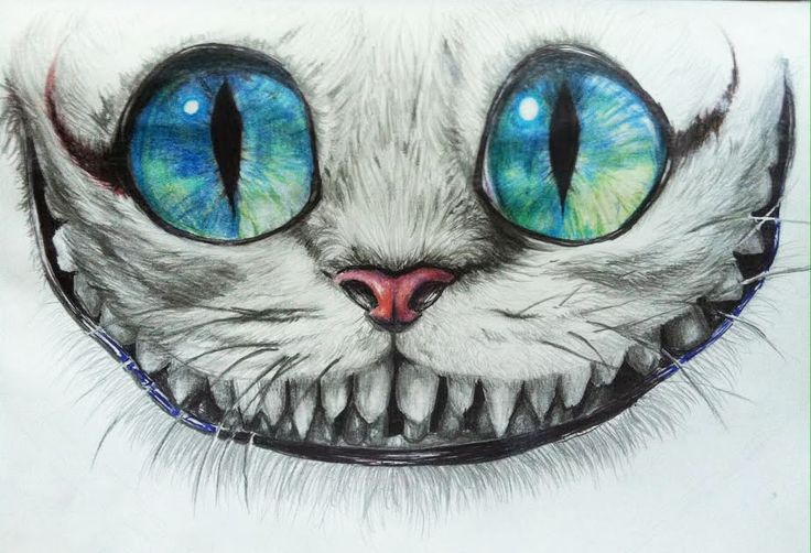 Drawn cheshire cat creative Face drawings on T604 @DeviantArt