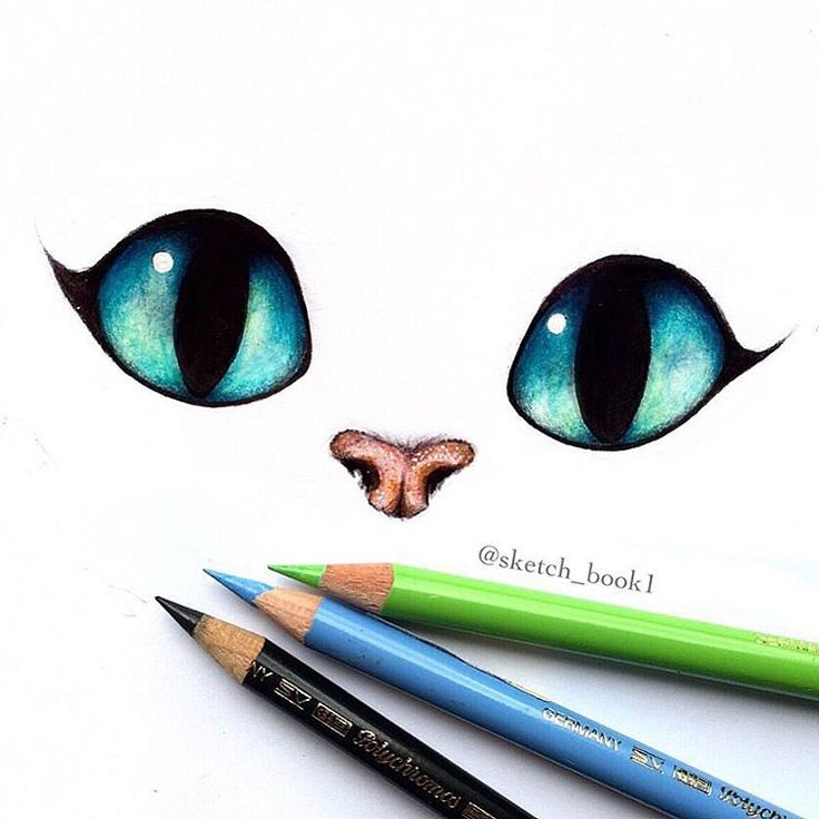 Drawn cheshire cat creative Cat but was drawing actually