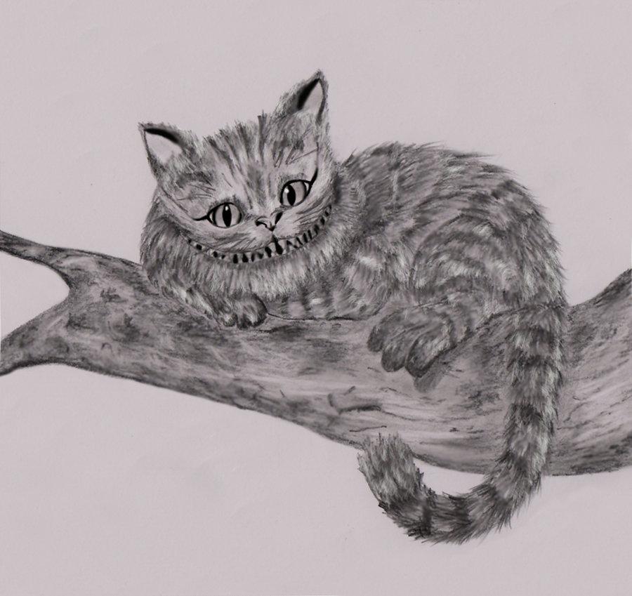 Drawn cheshire cat realistic Cat cheshire dielectric cheshire dielectric