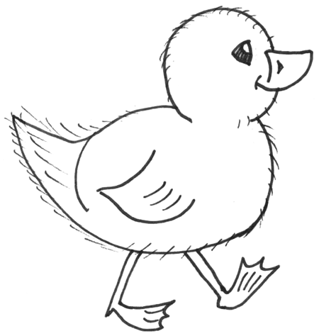 Drawn chick In Chicks How Draw Drawing