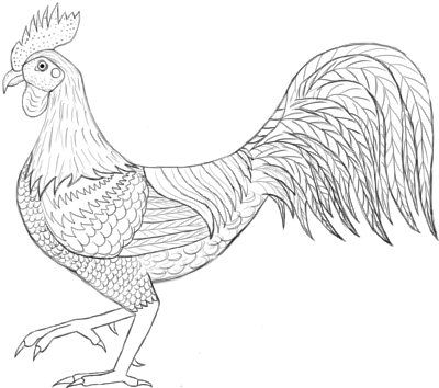 Drawn rooster line drawing #2