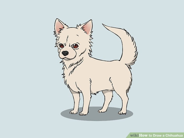 Drawn chihuahua Draw titled a (with wikiHow