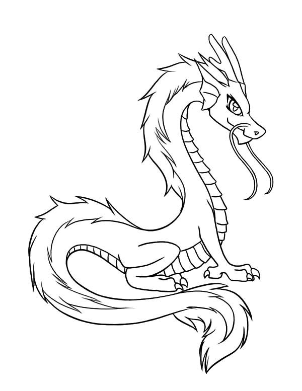 Drawn chinese dragon chinese animal #2