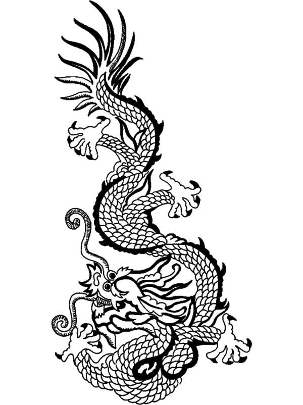 Drawn chinese dragon chinese animal #5