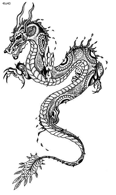 Drawn chinese dragon chinese animal #3