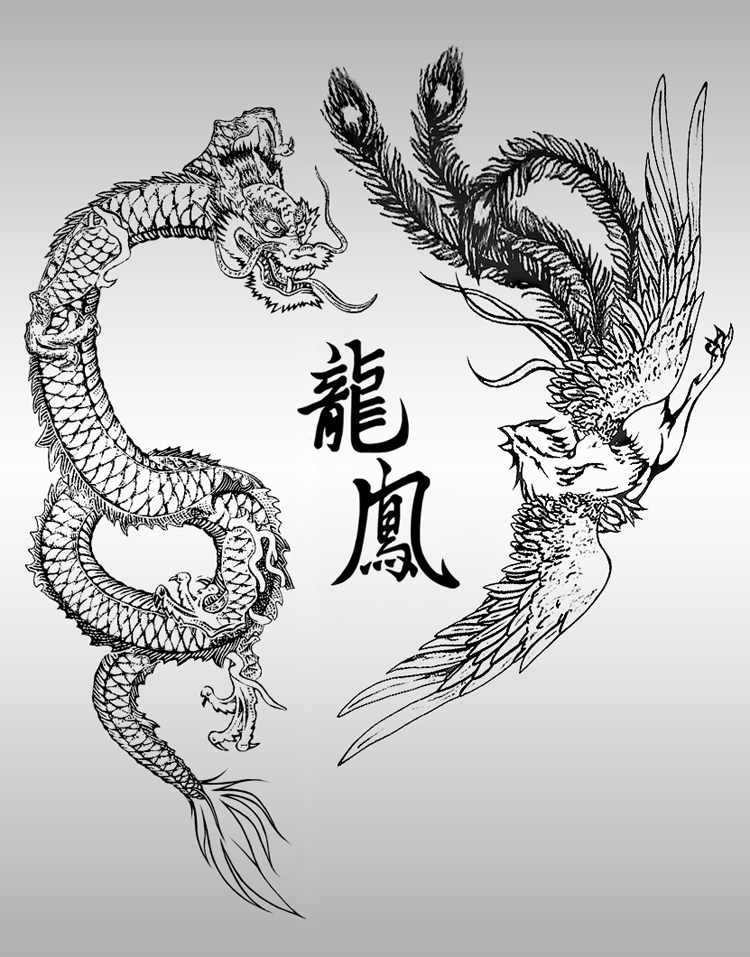 Drawn chinese dragon phoenix  Chinese Picture Dragon and