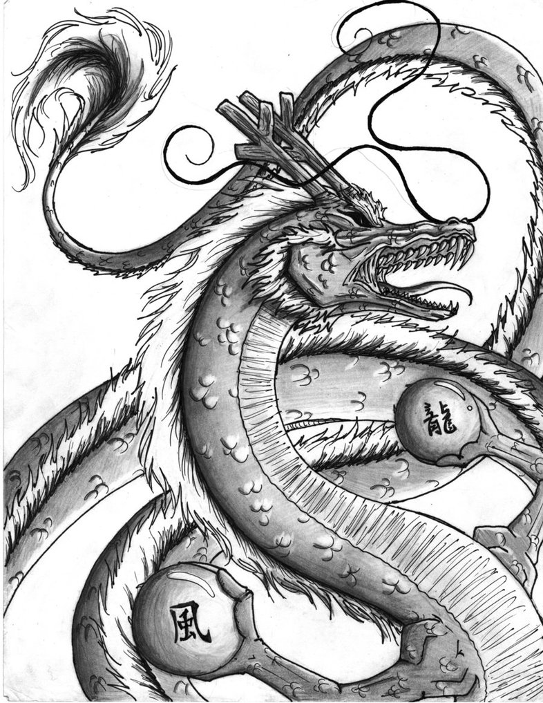 Drawn chinese dragon phoenix PhoenixPassion on DeviantArt Chinese Chinese