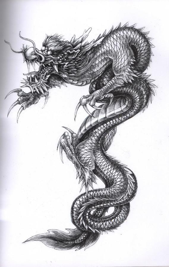 Drawn chinese dragon serpent #13