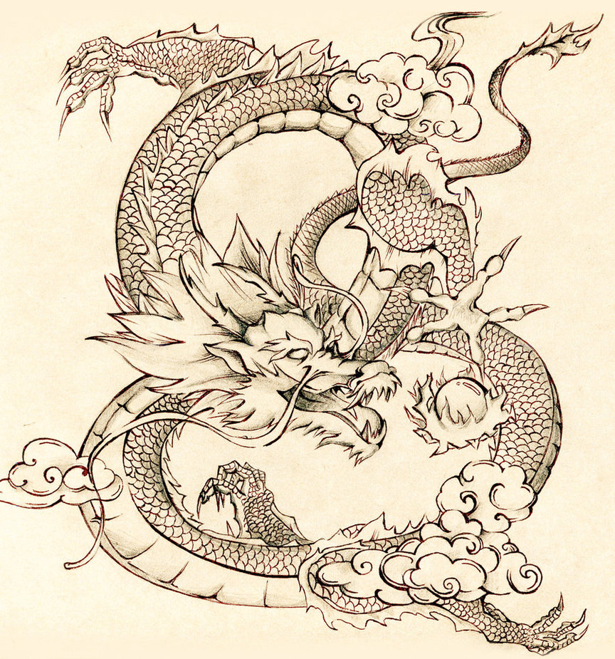 Drawn chinese dragon vietnamese dragon Dragons Tattoo Dragons year bmsolari