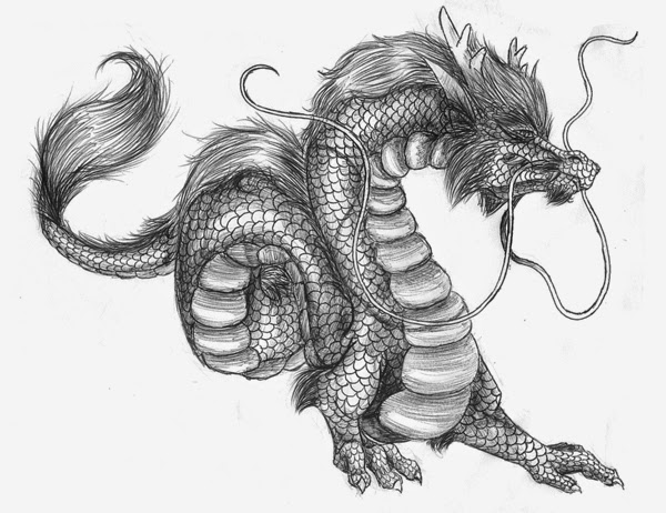 Drawn chinese dragon vietnamese dragon Dragon: Chinese Asian Dragons Dragon