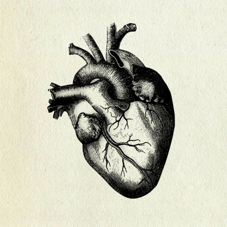 Drawn hearts draw Heart collection The heart site